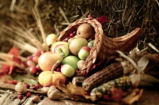 Autumn harvest cornucopia