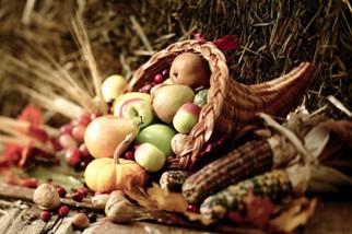 Autumn harvest cornucopia