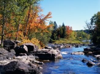 rocky stream in autumn