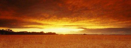 sunset on a golden horizon