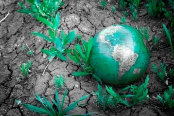 Going Green to Save the Earth